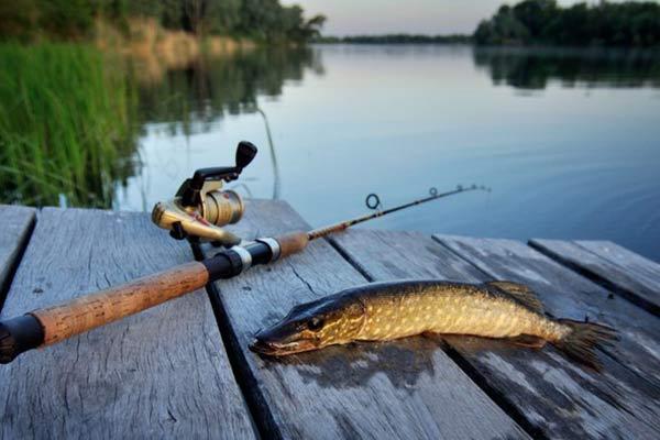 «Рыбаки ловили щуку, а поймали… судака!» Рыбалка на озере Разнас будет более удачной