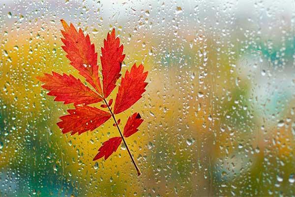 Прогноз погоды в Резекне на новую неделю