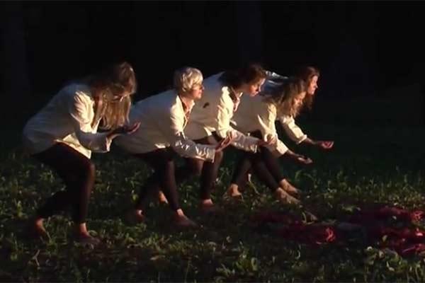 Танцы вдохнули жизнь в Лузнавское поместье